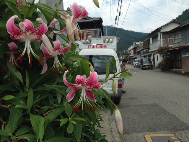 神山町で街頭宣伝