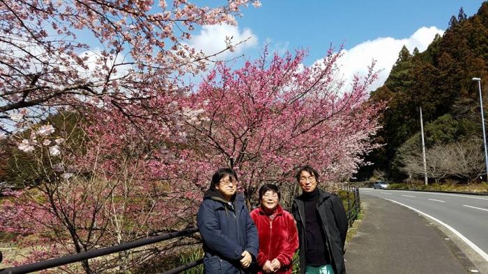 神山にて きれいな桜をバックに