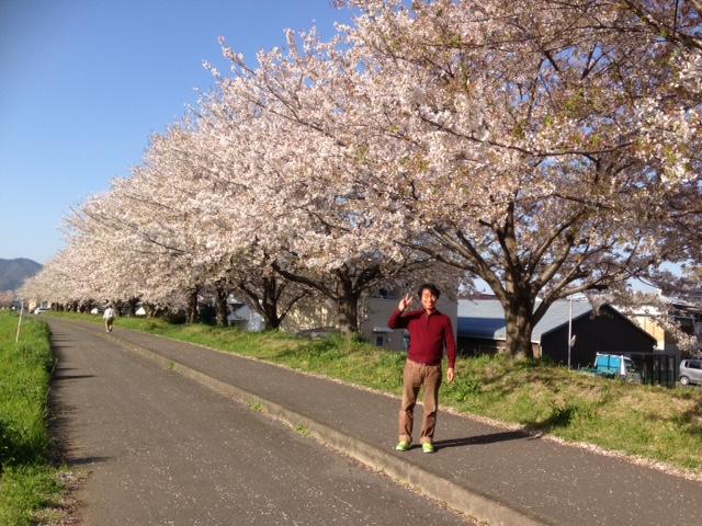 藍住町桜つつみ公園