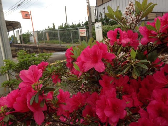 麻植塚駅前にて