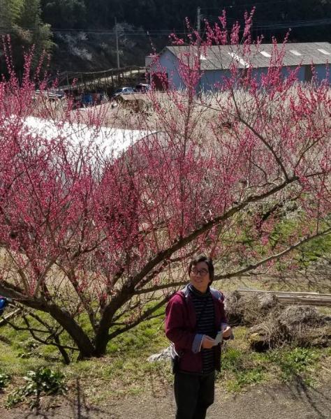 梅の花 てづかこうじ